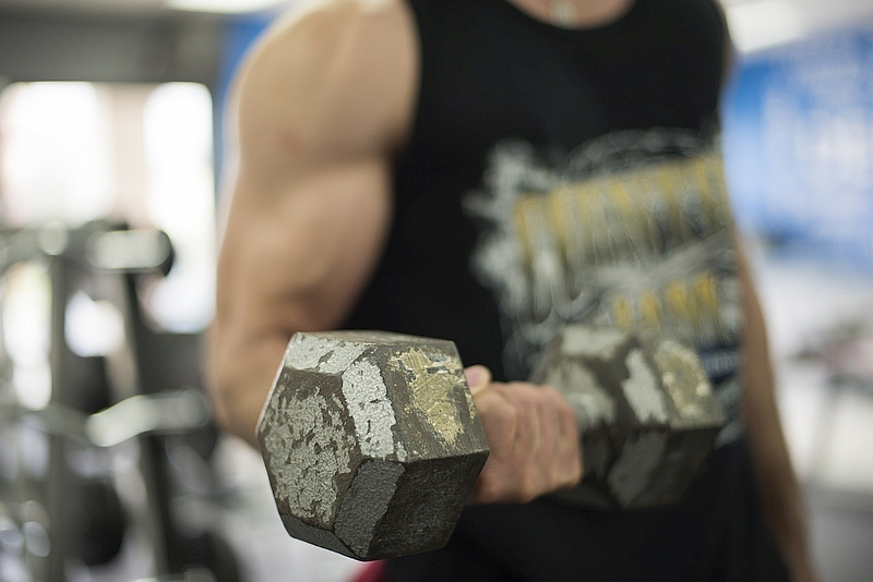 Flex Friday: The building blocks of musclegain