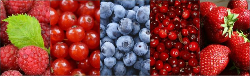Types of berries to eat every day