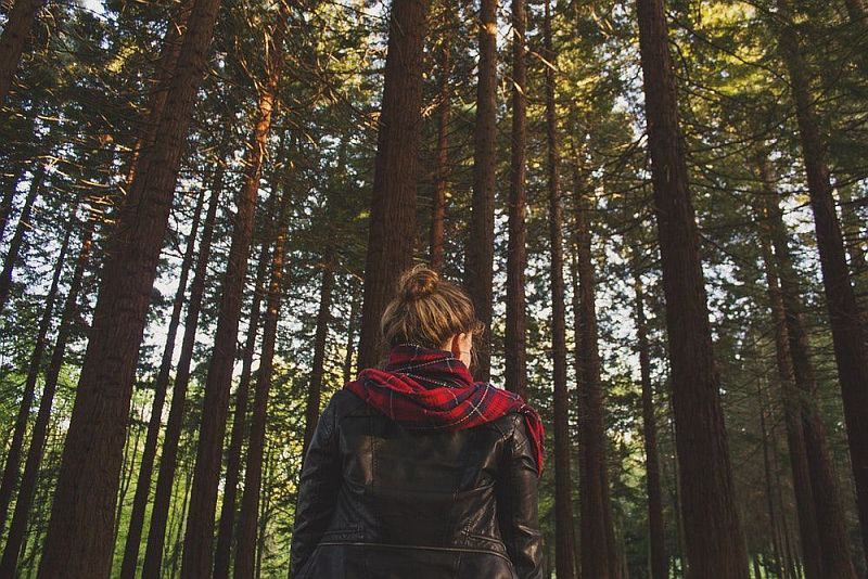Nature's healing effects on your mind and body (guestpost)